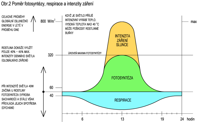 Poměr fotosyntézy, respirace a intenzity záření