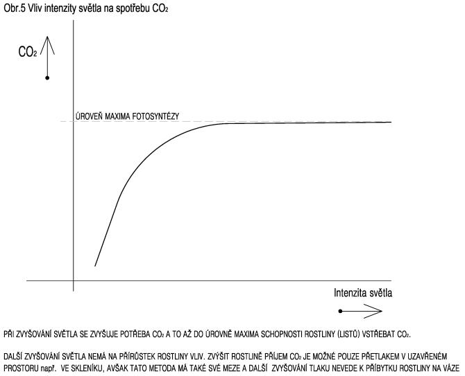 Vliv intenzity světla na spotřebu CO2
